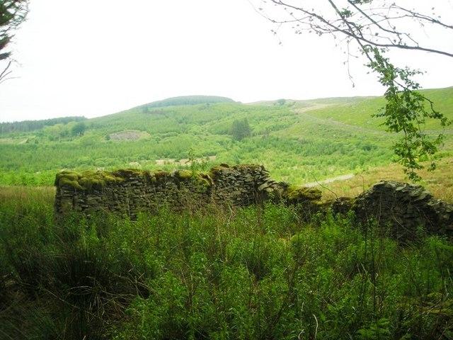 Ruined barn at Esgair Fraith Farm, Clywedog Plantation