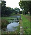SK3199 : The remains of the ornamental lake Wortley Hall by Steve  Fareham