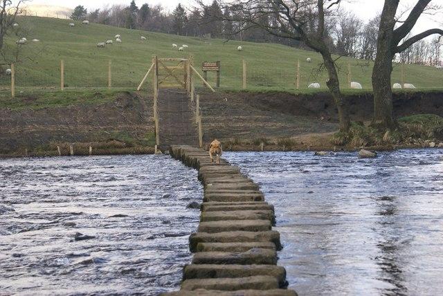Stepping stones across the River Hodder