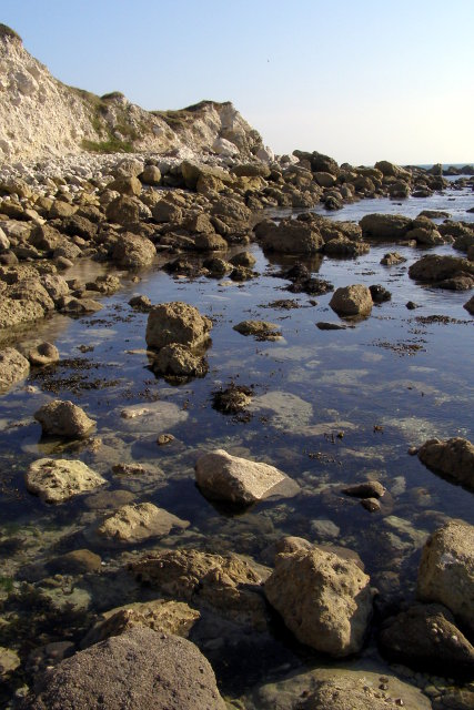 Rocky foreshore between Ringstead Bay and White Nothe