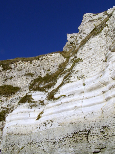 Lower Chalk cliffs, White Nothe