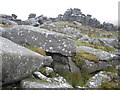 SX1480 : Boulder field, on Rough Tor by Roger Cornfoot