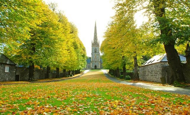 Autumn at St Malachi's, Hillsborough