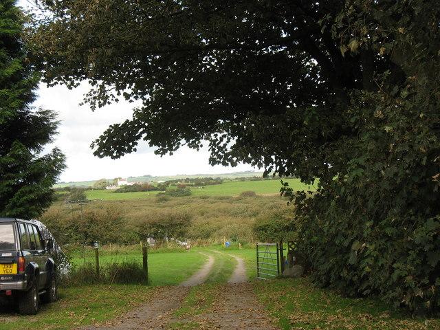 Cors Bodwrog fen from near Bodewran Bach