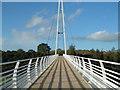 SX9691 : Baker Bridge crossing the A379 : Week 42