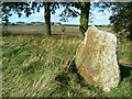 SU0975 : Standing stone near the road to Broad Town by Brian Robert Marshall