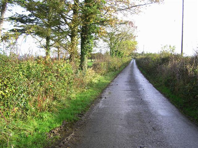 Road at Roughan