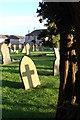 ST5495 : Churchyard, St Luke's, Tutshill : Week 43