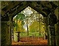 D1204 : Two gates near Ballymena : Week 43
