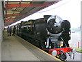 SU4209 : VSO-E Steam Hauled by Clive Warneford