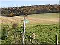 SP8202 : Farmland and woodland in the Chilterns by Roger