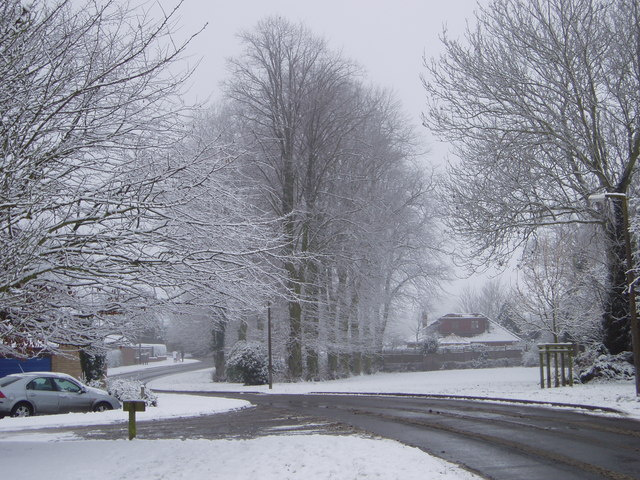 Berryfields in Winter
