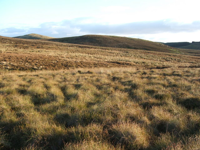 Little White Hill - from beside Black Burn