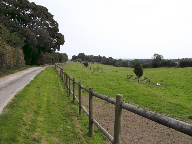 Fenced Track and Bridlepath
