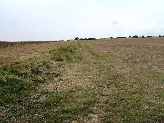 Bridleway to Wyham