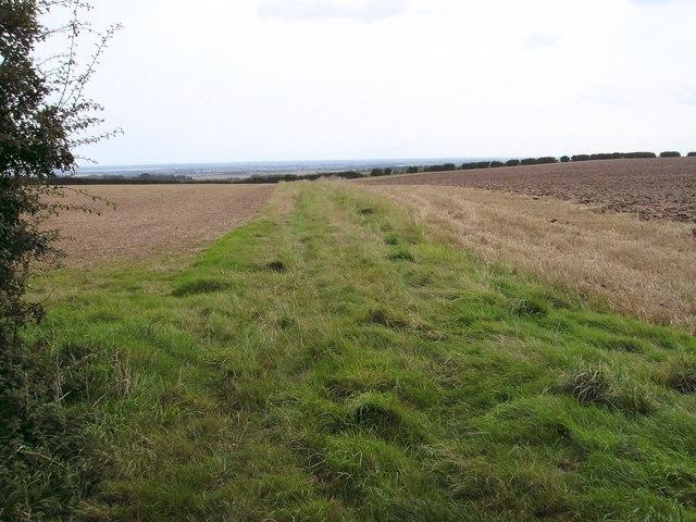Bridleway view eastward.