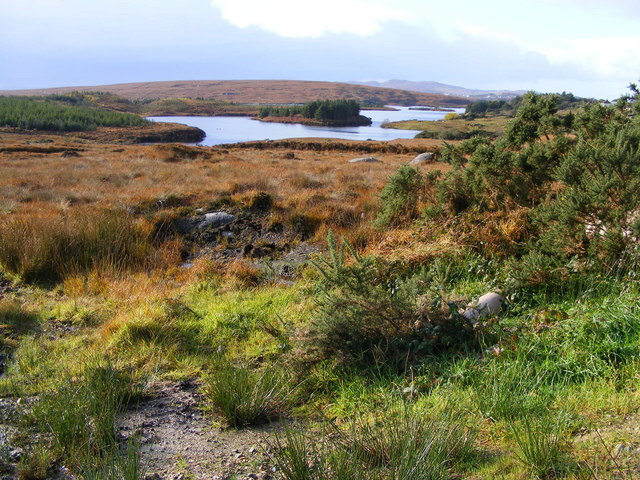 North east corner of Lough Chrathai - Crovehy Townland