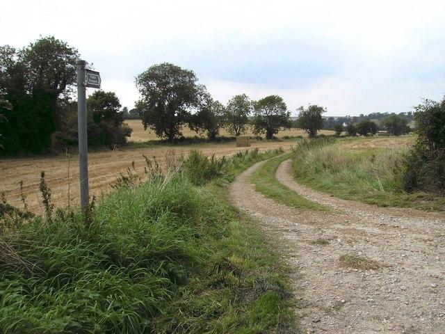 Bridleway to Swinhope Hill