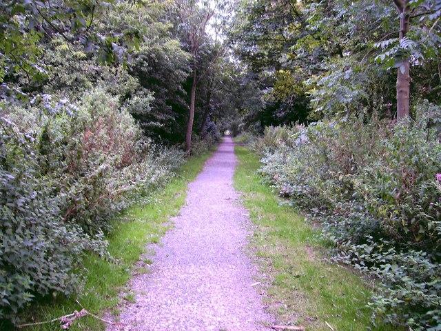Railway Walk near Stewton Lane