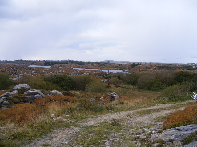 Eastern end of Lough Wasker - Cruickaghmore and Keadew Townlands