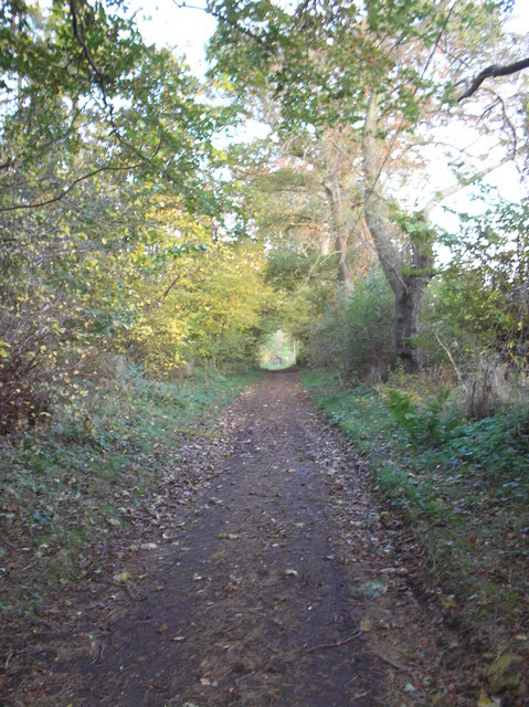 Path leading to footbridge over Lambden Burn