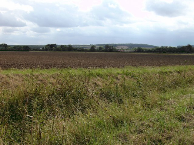 Distant Legbourne