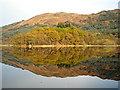 NN4204 : Autumn Reflections on Loch Chon : Week 44