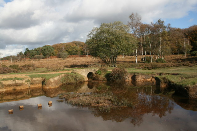 Mill Lawn Brook, New Forest