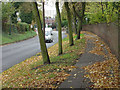 SK5340 : Wollaton Road and the Park wall by Alan Murray-Rust