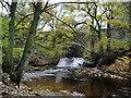 SE0318 : River Ryburn by Alexander P Kapp