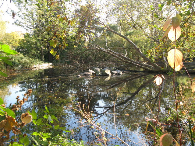 Brookmill Park Lake (4)