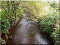 SE0335 : Bridgehouse Brook by John Poyser