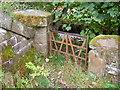SE0335 : Old gate by John Poyser