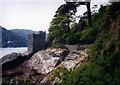 SX8950 : Kingswear Castle, Dartmouth by Peter Barr