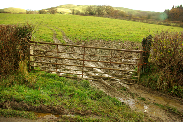 Muddy entrance near Trecoed
