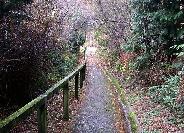 Down Granny Weaving's Lane, Ruspidge, Forest of Dean