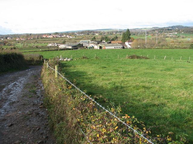 Tump Farm