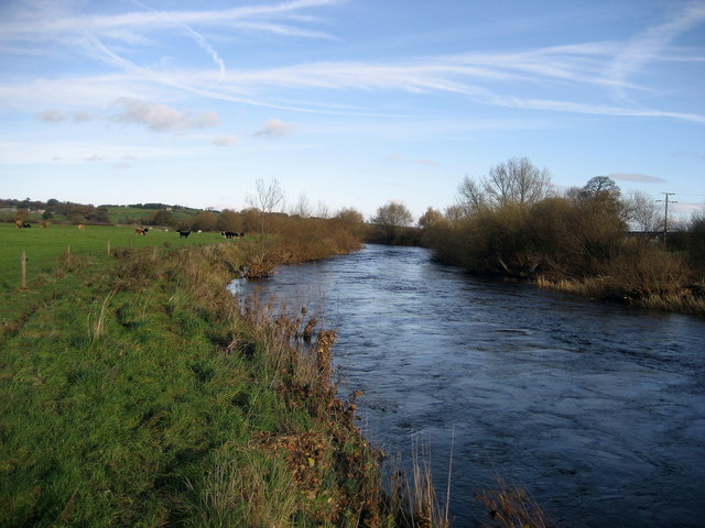 River Wharfe between Pool and Castley