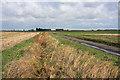 TL4392 : Track to Alders Farm by Bob Jones