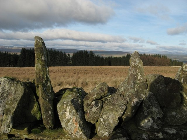 Stone wall, moorland & forest