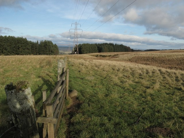 Gate, pylon, burn, moorland & forest