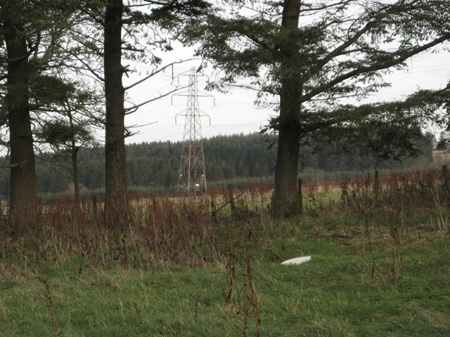 Electricity Pylon from the old Crofthouse