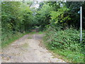 SP8905 : Bridleway off Chesham Lane by Shaun Ferguson