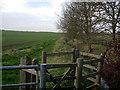 TL3858 : Footpath along Bin Brook by Hugh Venables
