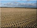 TL6455 : Huge field by Hugh Venables