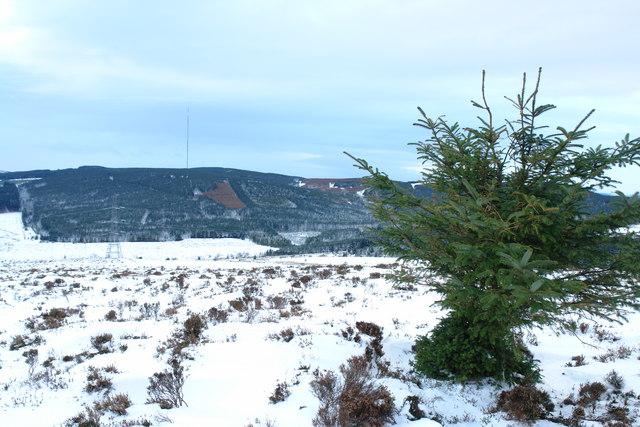 Craigneil Hill