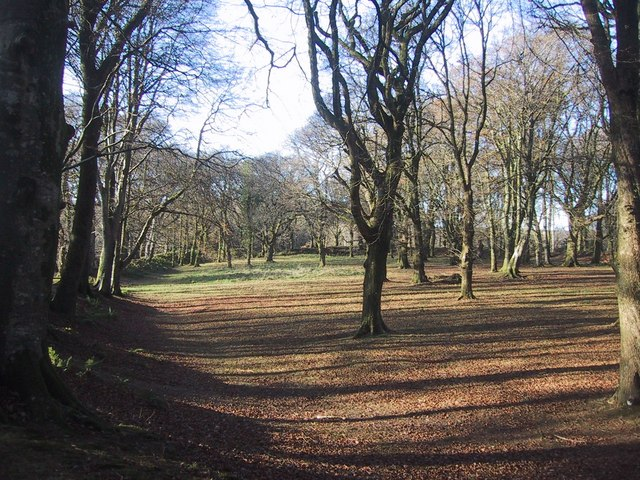 Interior of the Iron Age hillfort of Blackbury Camp