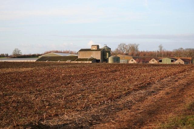 Taylor's Farm