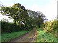 SX0772 : Track in Cornish farmland by Jonathan Billinger