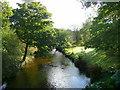 SX0671 : River Camel at Hellandbridge by Jonathan Billinger